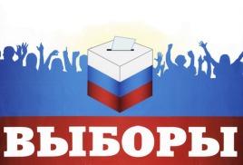 Выборы главы